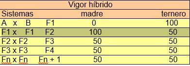 vigor híbrido
